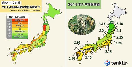 2019年花粉情報.jpg