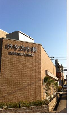 2012秋晴れ.jpg
