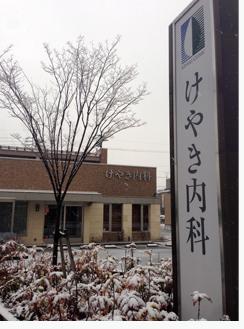 2014けやき内科雪景色.jpg