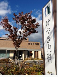 けやき紅葉2013.jpg