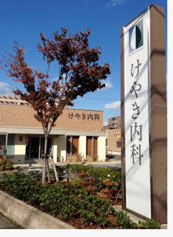 けやき紅葉2014.jpg