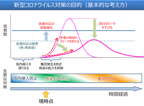 新型コロナウイルス対策の目的.jpg